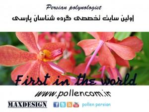 persian pollen